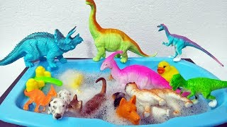 Learn Wild Zoo Animals Toys For Kids Learn Colors Learning Colors Safari Animal Toy Names Fun Video