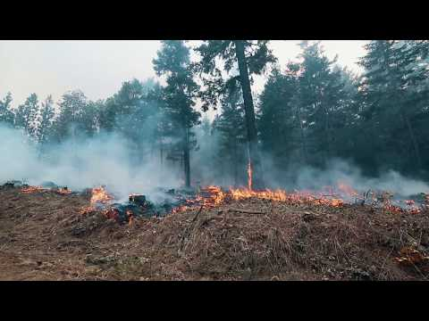 State Forester Fire Season Update August 2017