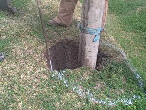 Hydro Excavation Pole Hole Digging for CenterPoint Energy | Vacuum Services | T-Rex Services