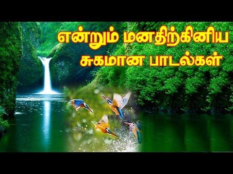 என்றும் இனிமையான மெலடி கானங்கள் Vol-5 MP3|Evergreen Tamil Songs|Illayaraja Melody Hits Part-5