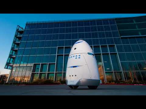 Robot Deters Homeless and AI replaces Lawyers