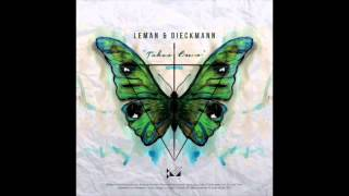 Leman & Dieckmann - Reset (Original Mix) Baile Musik