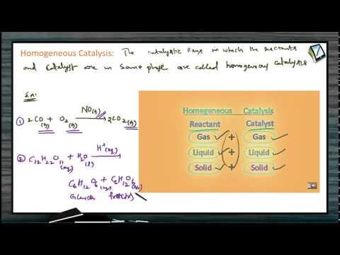 Types Of Homogeneous Catalysis
