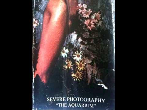 Severe Photography - The Aquarium