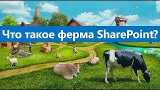 Что такое ферма и топология фермы SharePoint?