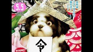 高橋留美子が年1回のペースで発表している読み切りシリーズ「高橋留美子...