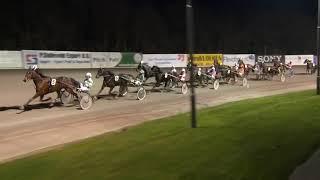 Vidéo de la course PMU PRIX WIERDA & PARTNERS