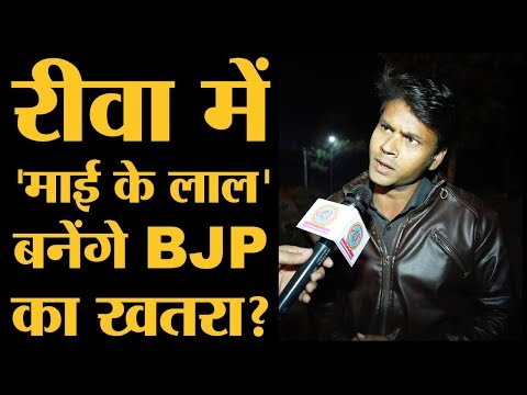 MP Election: Rewa में BJP Minister और Rebel की लड़ाई के बीच सबसे बड़ा मुद्दा l