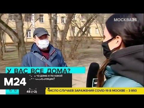 Кто может выходить из дома во время самоизоляции - Москва 24
