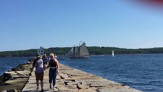 Beautiful weather, bountiful observers for Parade of Sail