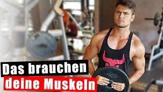Was braucht es um Muskeln aufzubauen?