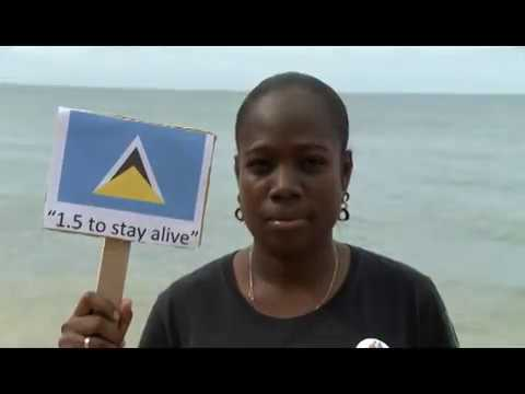 1.5 To Stay Alive - CYEN Climate Change Video for COP 21