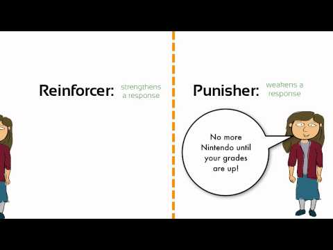 Learning: Negative Reinforcement vs. Punishment