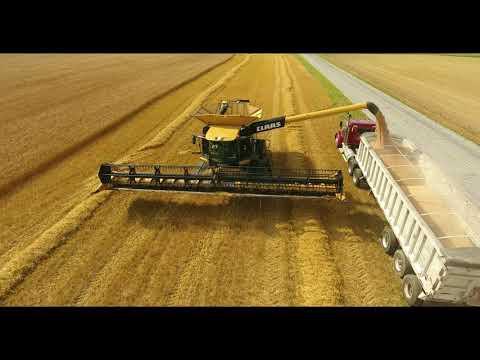 Salem County Wheat Harvest