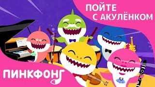 Концерт Оркестра Акул | Пойте с Акулёнком | Пинкфонг Песни для Детей