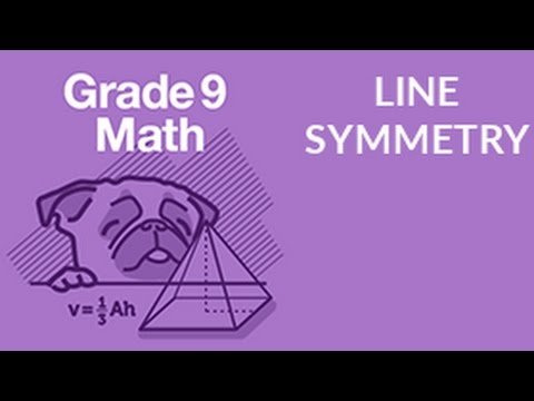 Drawing Lines Of Symmetry Free Worksheets : ʕu ᴥu ʔ learn line symmetry in seconds youtube
