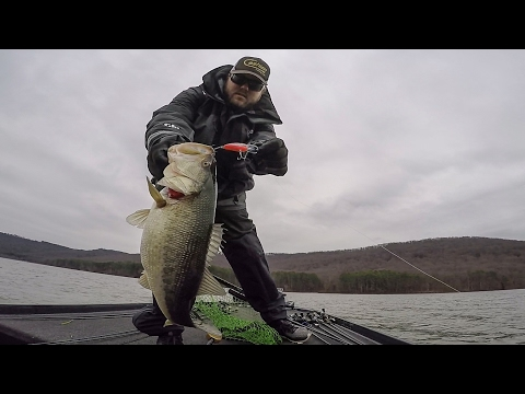 GoPro | Lake Guntersville | Day 1 Highlights