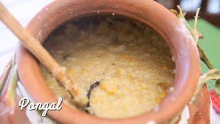 How To Make Sakkarai Pongal (Sweet Rice & Lentils Pudding) In Pot || Preetha || Dakshin Curry