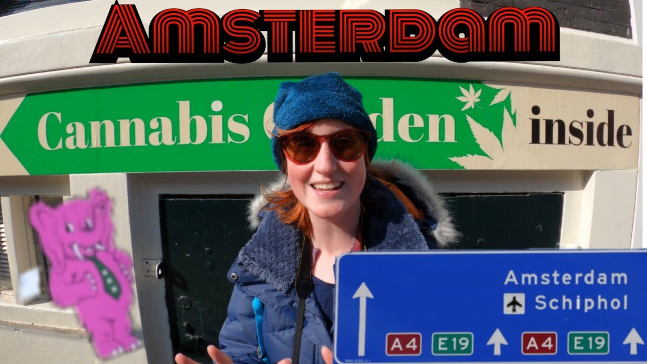 How to Have Fun in Amsterdam | Campervan Europe [S4 Ep43]