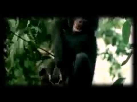 porno-video-yutub-trahayutsya-trahayut