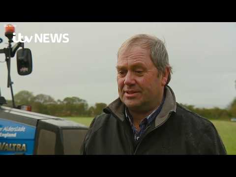 Farmer's success at the British Ploughing Championships | ITV News