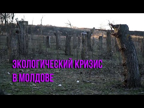Pur și Simplu: Экологический кризис в Молдове