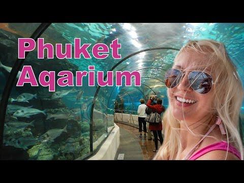Аквариум Пхукет / Aquarium Phuket Thailand