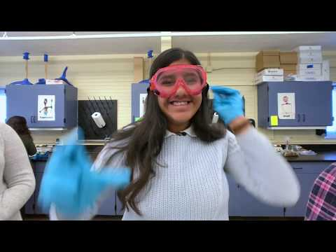 Arrupe Jesuit High School: Creating a Buzz