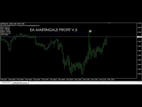 ea-robot-forex-trading-martingale-profit-v.5-t25shop