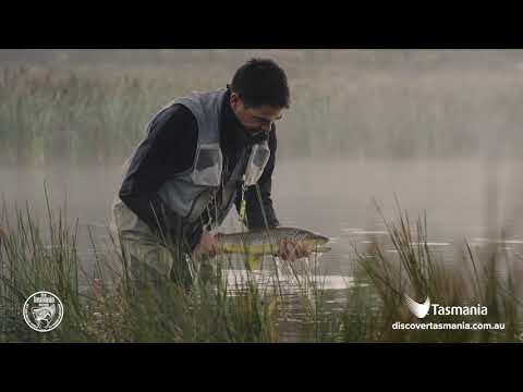 Tasmania – Home To The 2019 World Fly Fishing Championships