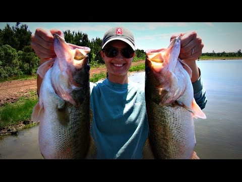 Topwater Bass Fishing Blowups Series 12 - Land Shark Edition