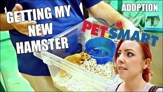 GETTING MY NEW HAMSTER | Petsmart Adoption | Syrian Hamster thumbnail