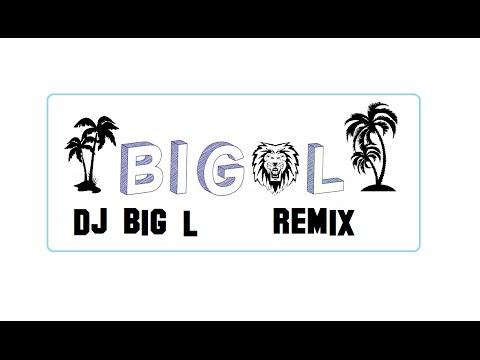 Sidney Samson - Trojan VS Martin Garrix - Animals (Remix big L)