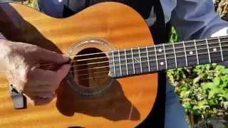 """2016 Zager """"Easy Play"""" Parlor size guitar Quick Walkaround"""