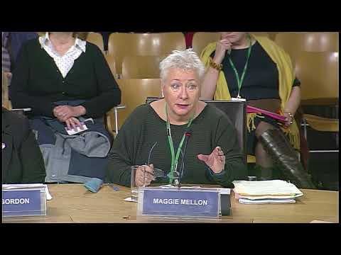 Education and Skills Committee - 1 November 2017
