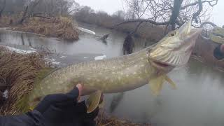 Рыбалка на СПИННИНГ в ДЕКАБРЕ на малой реке Ловля щуки зимой на спиннинг