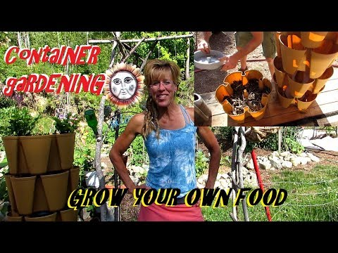 CONTAINER GARDENING: SUSTAINABLE FOOD GROWTH!!!