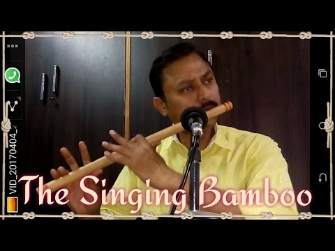BAHARON PHOOL BARSAO Flute Instrumental By ALOK KULSHRESHTHA
