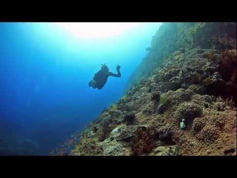 2013 Taiwan Lanyu Island (Orchid Island) Dive Documentary 1080P 蘭嶼潛水紀錄片