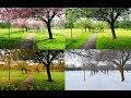How Seasons Work on Flat Earth