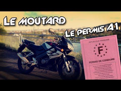 MOTOVLOG #2 - LE PERMIS A1 À 16 ANS - LE MOUTARD