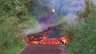 Footage of Lava and Cow Rescue Plan at Jason's Hui