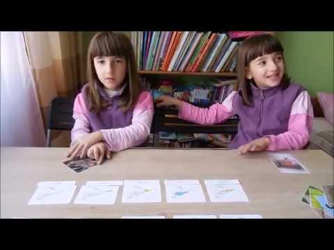 Pasarile - Lectii de zoologie: Vertebrate (Lectii Montessori, Editura Gama)