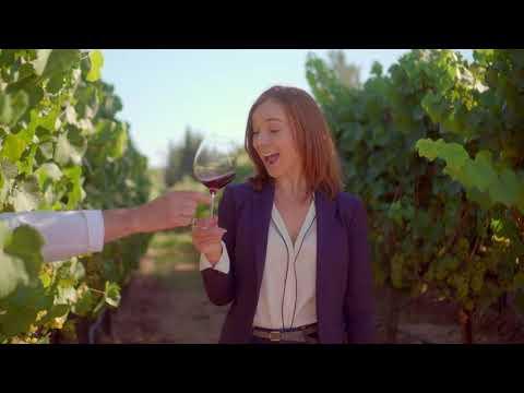 Palate Club How AI Helps Us Choose Wine