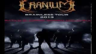 Cranium - brainless tour 2013 part 2