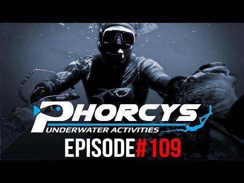PHORCYS Spearfishing Worldwide Videos #109 - Underwater Activities 2019