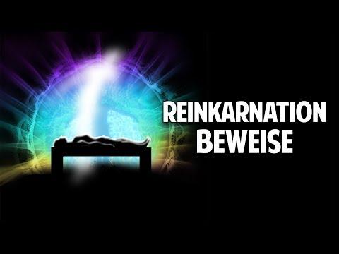 Reinkarnation: Wissenschaftliche Beweise und reales Erleben - Horst Vogel