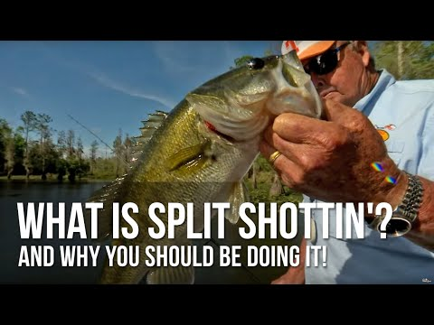 What Is Split Shottin' And Why You Should Be Doing It!