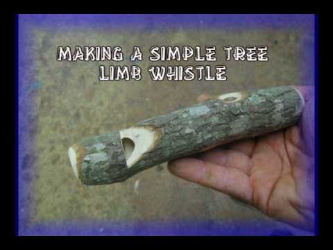 Making A Simple Tree Limb Whistle Youtube