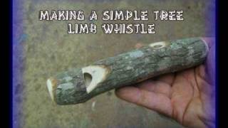 Making A Simple Tree Limb Whistle